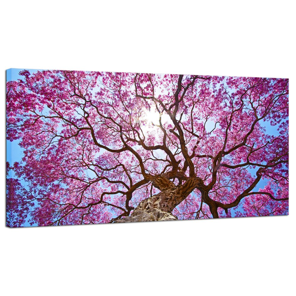 Amazon com pyradecor cherry blossom tree large modern floral giclee