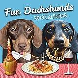Fun Dachshunds 2019 Dachshund Wall Calendar