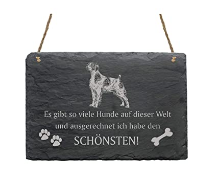 Pizarra «BRITTANY SPANIEL» - mejor perro del mundo - Diseño ...