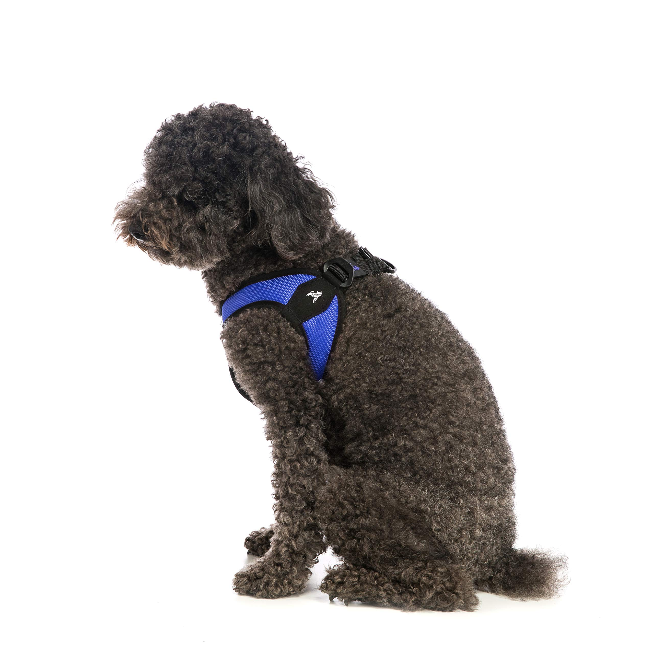 Gooby - Escape Free Easy Fit Harness, Small Dog Step-in Harness for Dogs That Like to Escape Their Harness, Blue, Medium by Gooby