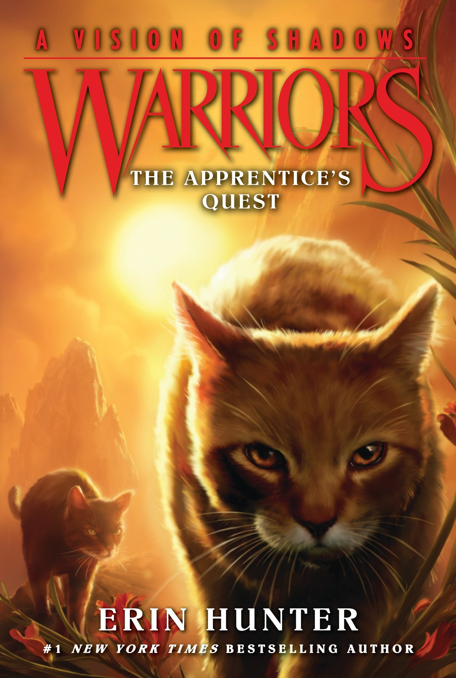 Warriors: A Vision Of Shadows #1: The Apprentice's Quest: Erin Hunter:  9780062386397: Amazon: Books