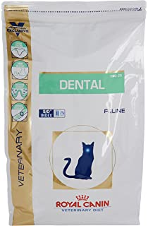 Royal Canin Cat Food Veterinary Dental Ds0 29 Amazoncouk Pet