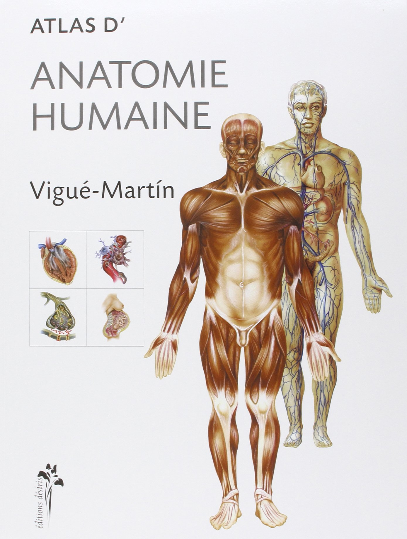 Atlas d'anatomie humaine Broché – 22 juillet 2004 Vigué-Martin Atlas d' anatomie humaine ADVERBUM 2907653946