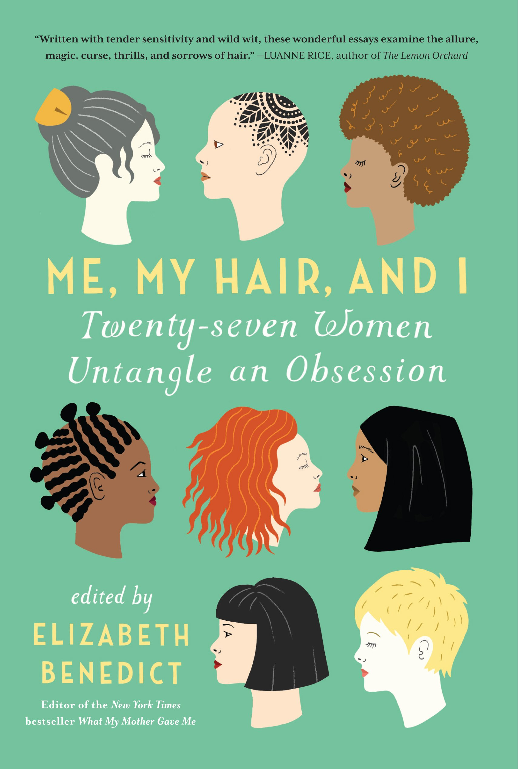 me my hair and i twenty seven women untangle an obsession me my hair and i twenty seven women untangle an obsession elizabeth benedict 9781616204112 com books