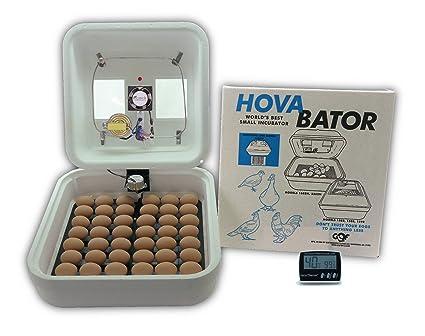 Amazon Hovabator Advanced Egg Incubator Combo Kit Includes