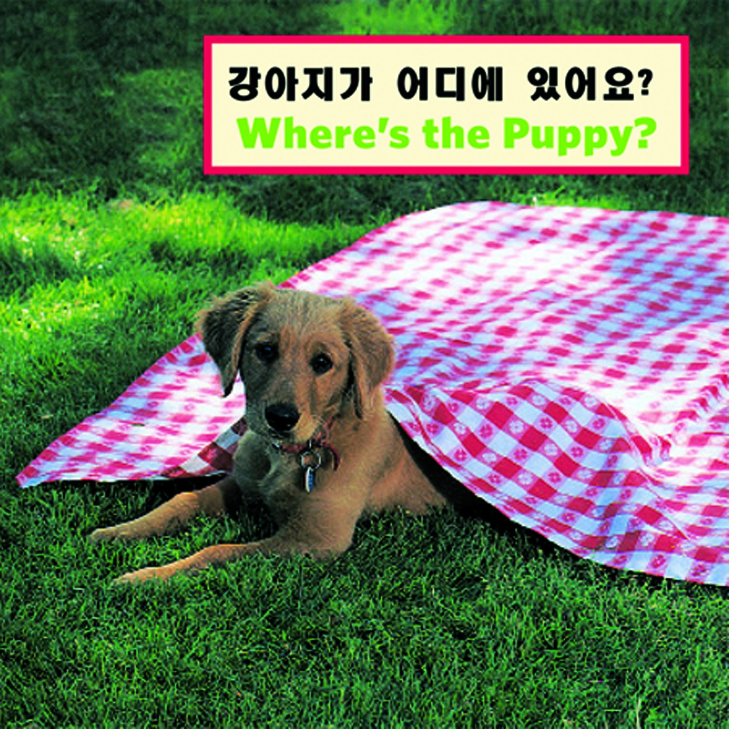 Read Online Where's the Puppy? (Korean/English) (Korean and English Edition) pdf