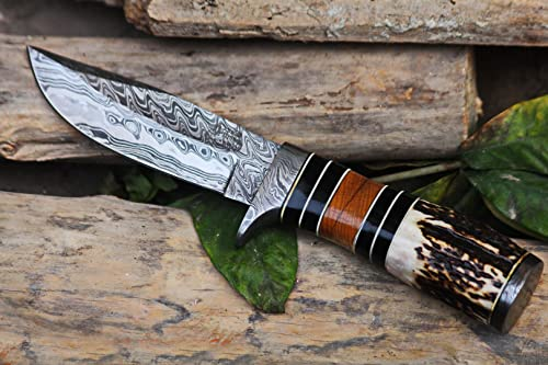 Black Mamba Knives BMK-103 Bobcat Knife 8.5 Long 5 Blade 9 Ounce Damascus Hunting Fixed Blade Knife With Stag Antler Hand Made Word Class Knives