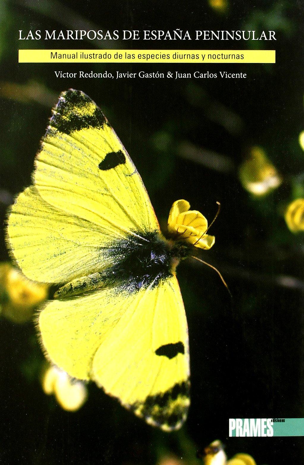 Mariposas De España Peninsular, Las Guias De La Naturaleza: Amazon.es: Redondo, Victor, Gaston, Javier, Vicente, Juan Carlos: Libros