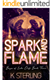 Spark And Flame (Boys Of Lake Cliff Book 3)