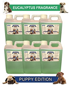 Trade Chemicals 6 x 2L Fresh mascota caseta perro desinfectante Puppiedtion: Amazon.es: Productos para mascotas