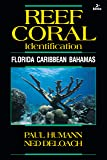 Reef Coral Identification: Florida Caribbean Bahamas (Reef Set)