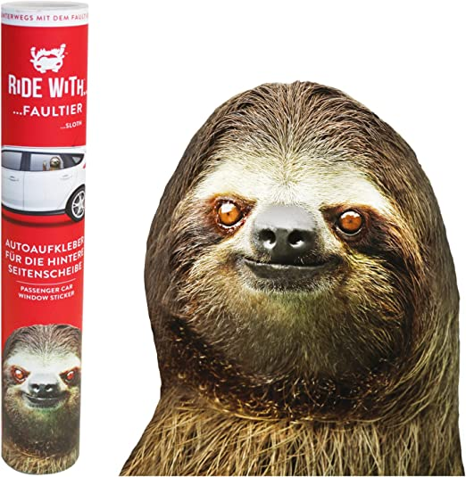 Thumbs Up Rw Slthlhd Ride With A Sloth Fenstersticker Faultier Spielzeug