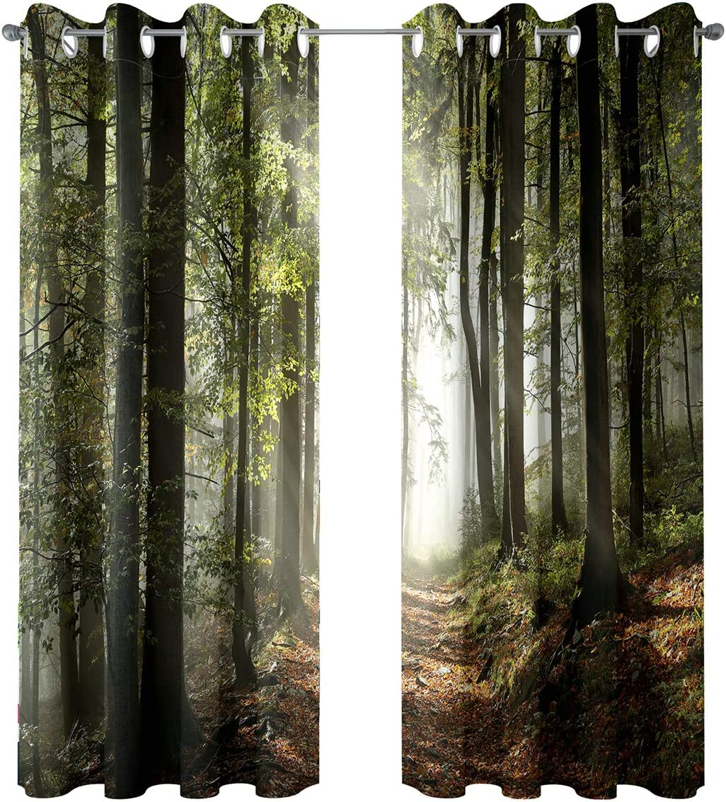 Riyidecor Blackout Forest Tree Curtains Country Nature Rural Village Pathway Mountains Wilderness Scene Autumnal Living Room Bedroom Window Drapes Treatment Fabric (2 Panels 52 x 84 Inch)