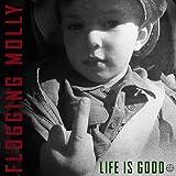 Life Is Good [Vinyl LP]