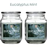 Aromatherapy Hosley Set of 2 Eucalyptus Mint, Highly Scented, 18 Oz EACH, 18 Oz EACH, Jar Candle. Ideal votive GIFT for party favor, weddings, Spa, Reiki, Meditation, Bathroom settings