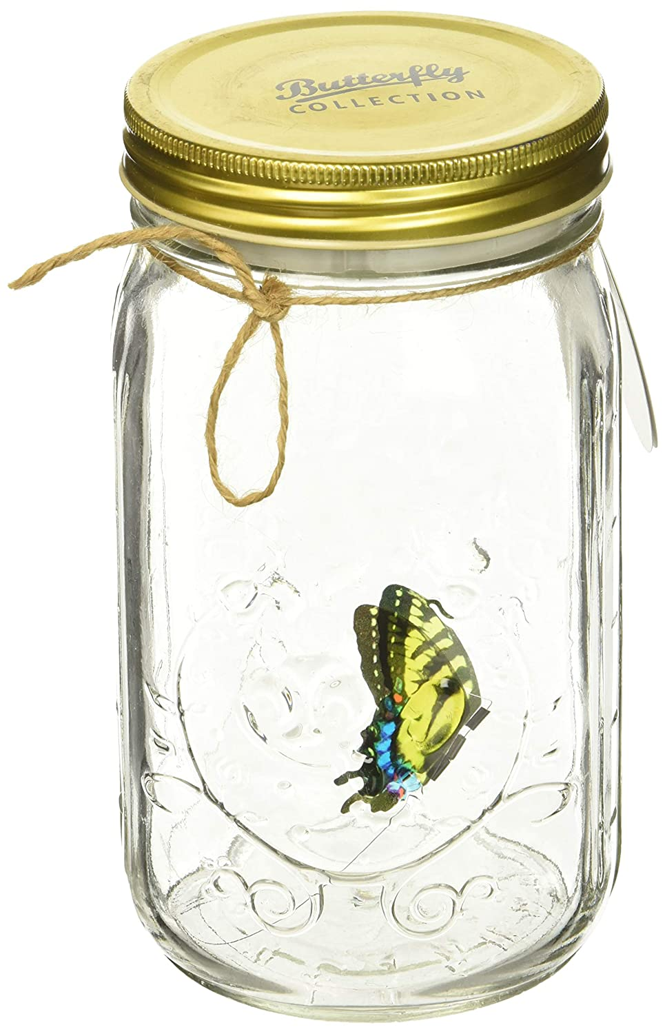 My Butterfly Collection - Animated Butterfly in a Jar - Yellow Swallowtail by My Butterfly Collection B003YUU3TG