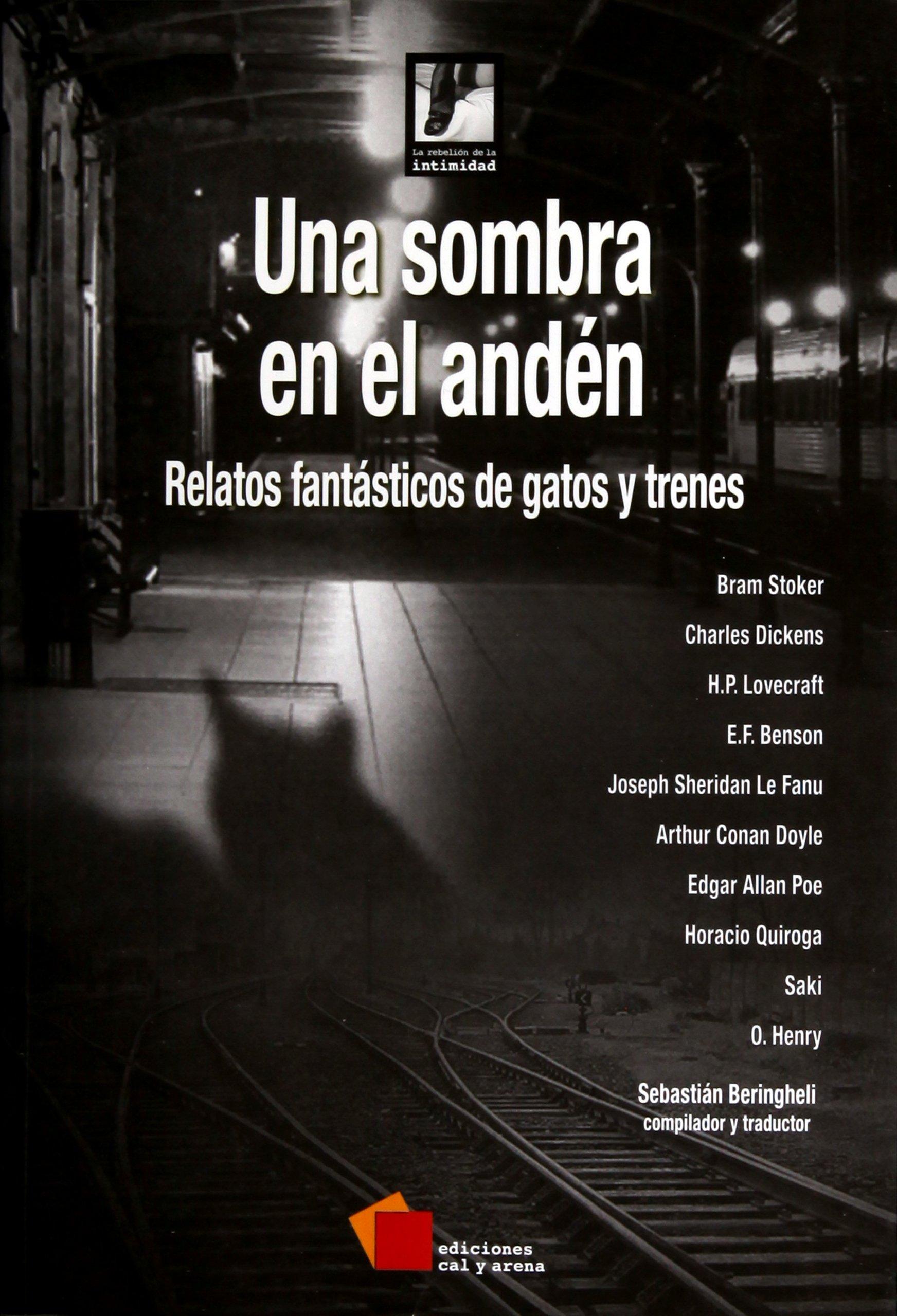 RELATOS FANTASTICOS DE GATOS Y TRENES (Spanish) Paperback – 2013