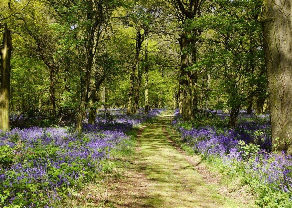Amazon Com Leowefowa Vinyl 7x5ft Nature Spring Backdrop Purple