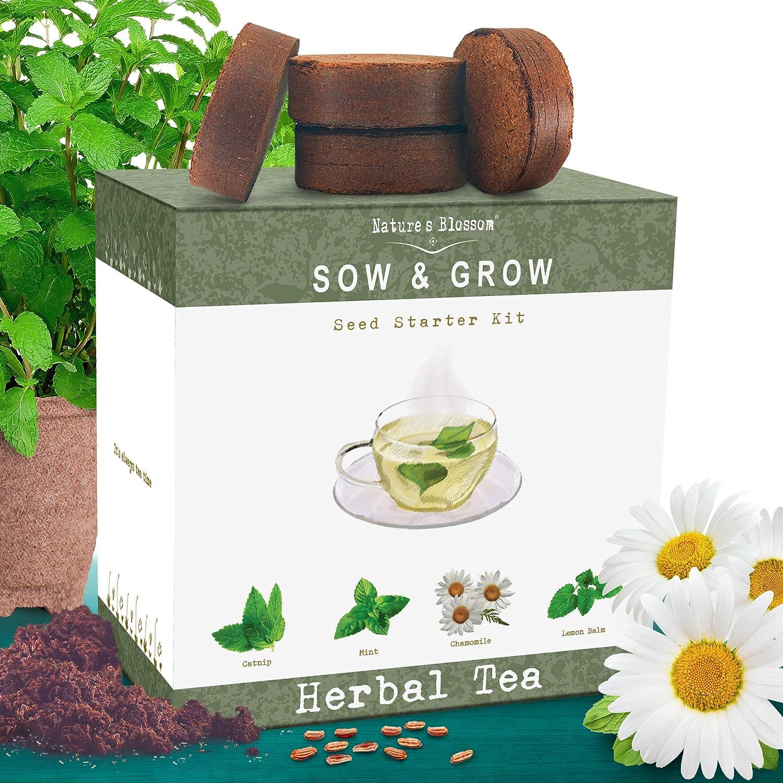 Nature/'s Blossom Herb Garden Seed Starter Kit Grow 4 Herbs from Organic Seeds