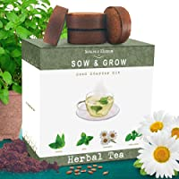 Nature's Blossom Herbal Teas Seed Starter Kit. Indoor Growing Set to Grow Tea Herbs at Home from Herb Seeds - Mint, Chamomile, Lemon Balm, Catnip. Gardening Gift Box for Beginner Gardeners