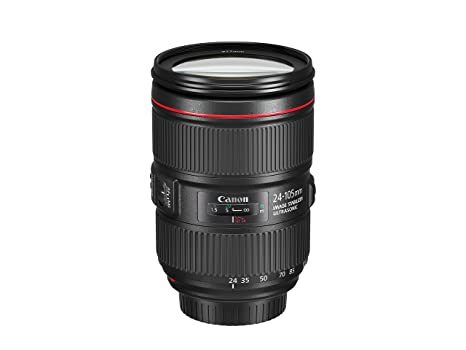 The 8 best canon ef 24 105 usm lens