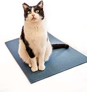 Feline Yogi Cat Yoga Mat with Cat Toy. Cat Scratcher, Bed, Activity Play Mat with Catnip Toy.
