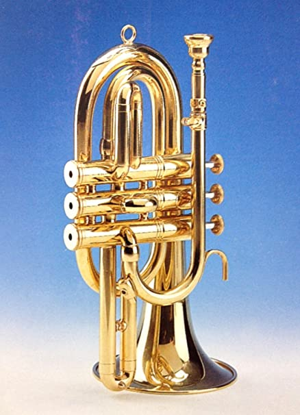 Amazon.com: CORNETA - Honsuy (Corta) DO (Laton Pulido) Con 3 Pistones: Musical Instruments