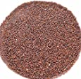 神戸アールティー ブラウンマスタードシード 500g Brown Mustard Seed ブラウンマスタード マスタード ホール スパイス 香辛料 業務用