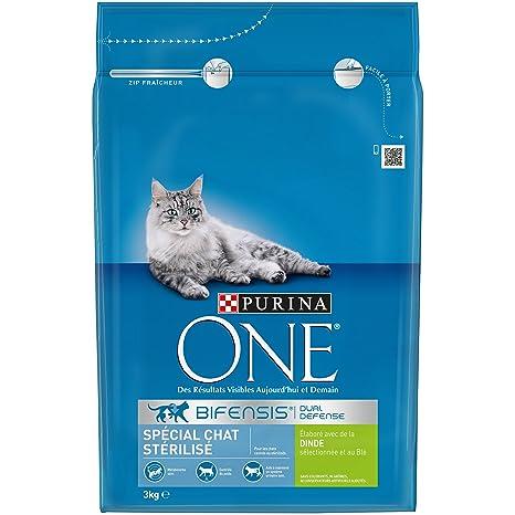 Purina ONE - Pienso para Gatos Adultos Especial para Gatos ...