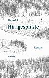 Hirngespinste: Roman (Reclam Taschenbuch)
