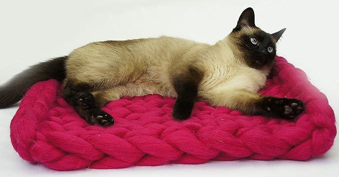 Pet cama, estera, manta. Naturales y ecológica lana. Hecho a mano. Envío Gratuito. Cozy regalo creativo. Color rojo (cat mat): Amazon.es: Productos para ...