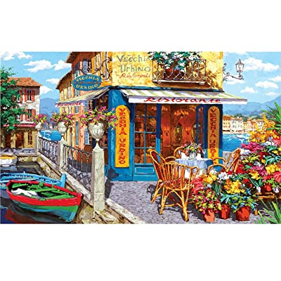 1000 Pieces Jigsaw Puzzles, Puzzles Toy Intellectual Educational Game for Adults Kids, Puzzle DIY Art Project for Home Wall Decor, 27 x 20 Inch: Toys & Games