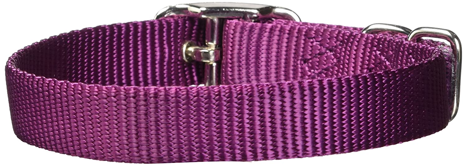 Hamilton ST 18PU 5/8-Inch by 18-Inch Single Thick Nylon Deluxe Dog Collar, Purple