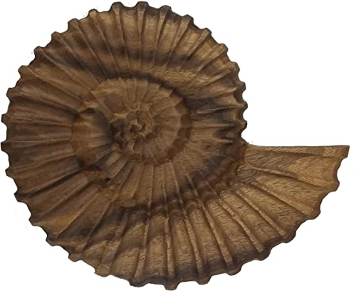 roro Handcarved Nautical Coastal Wood Nautilus Shell Wall Hanging