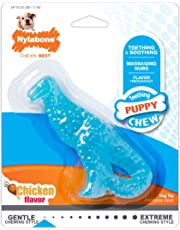 Nylabone Dinosaur Dental Chew Toy, for Teething Puppies