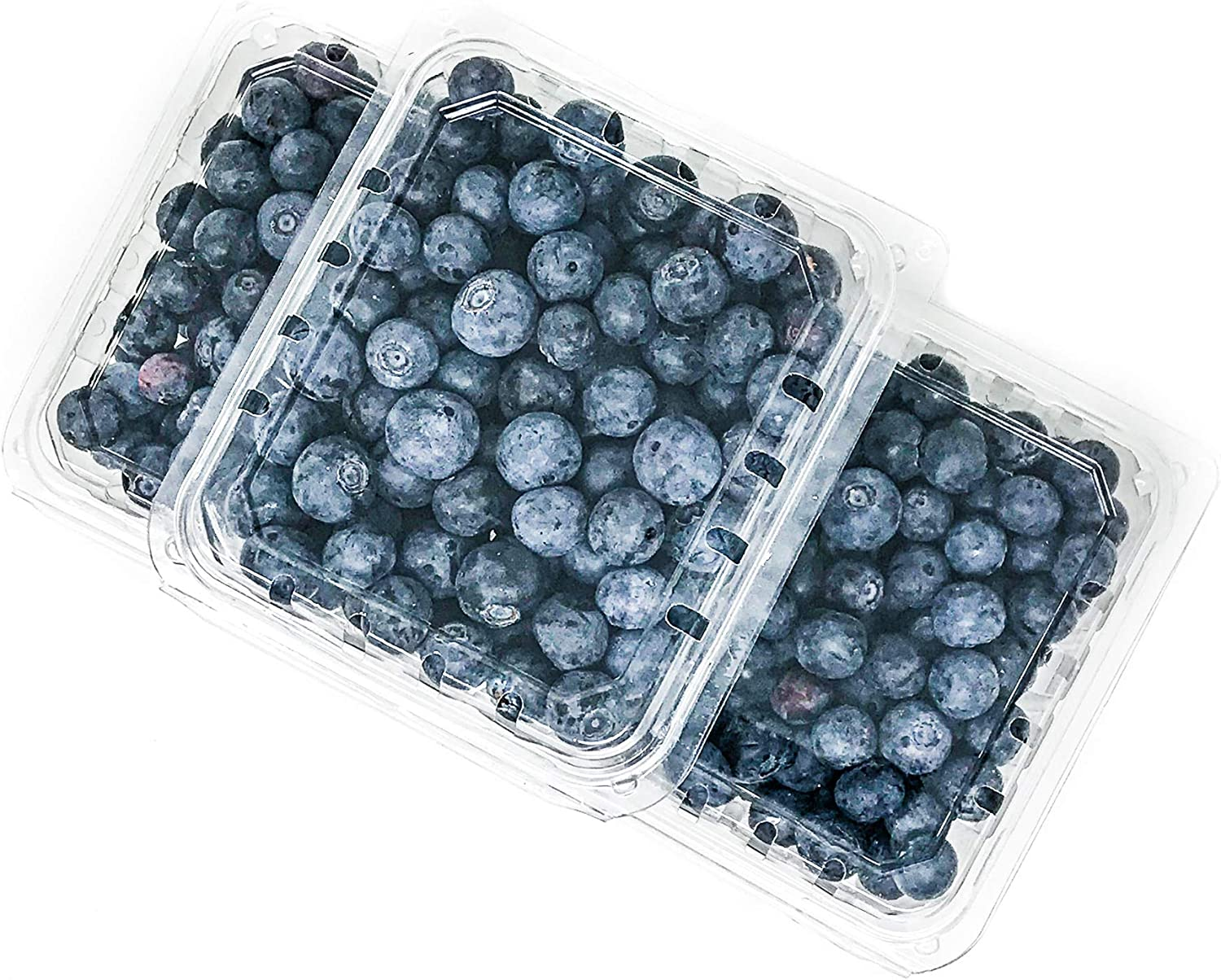One Pint Clear Plastic Berry Clamshell Container Vented (30 Count) for Strawberry Blueberries Tomatoes and Produce