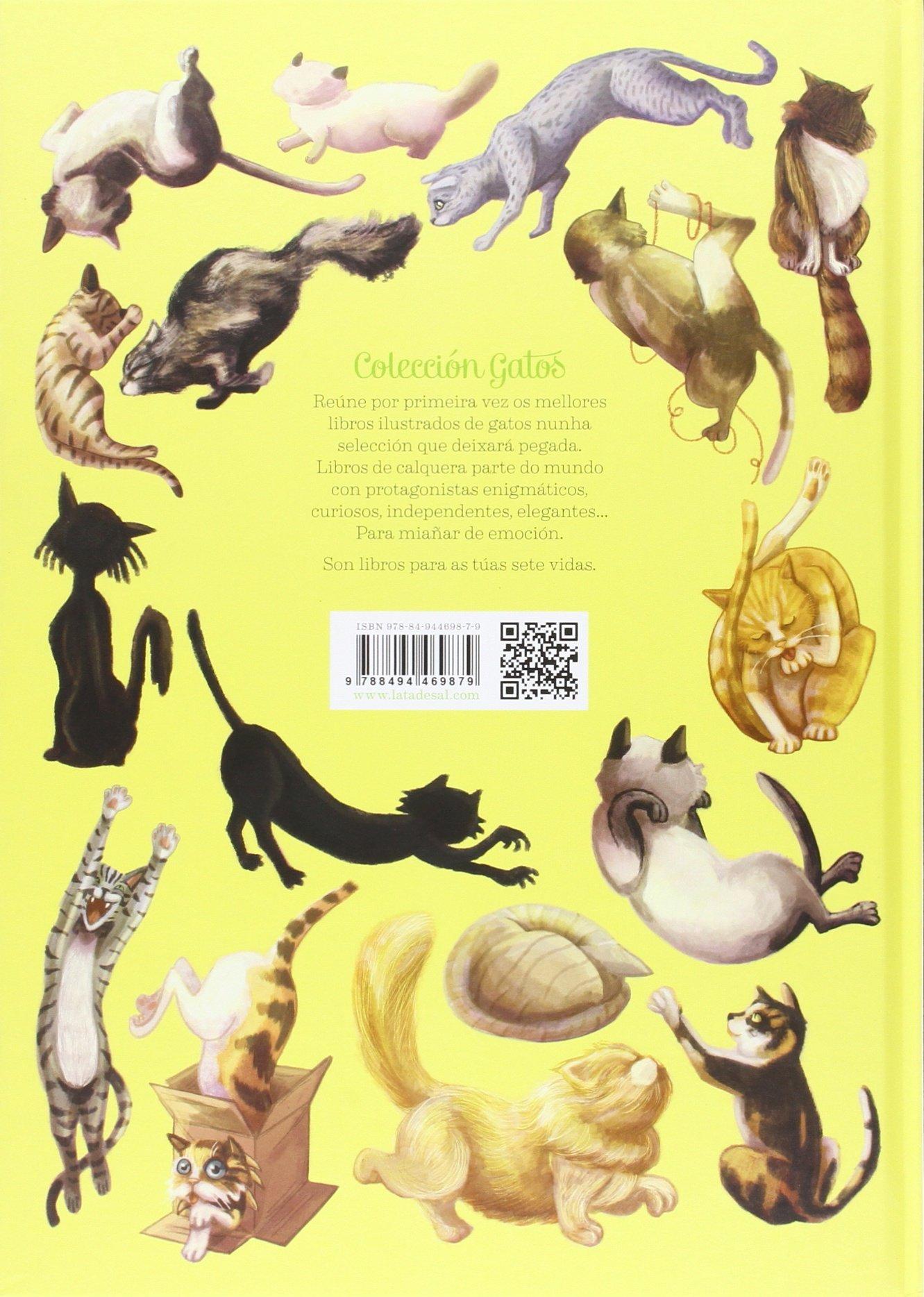 Breve Gatopedia Ilustrada: Zoraida Zaro Soto: 9788494469879: Amazon.com: Books