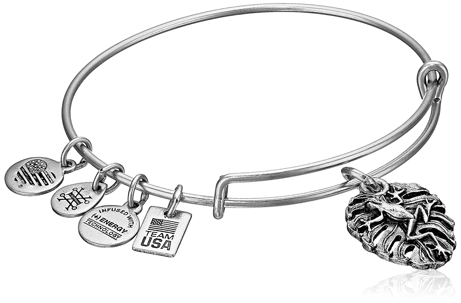 Amazon.com: Alex and Ani Women\'s Frog Bangle Gold One Size: Jewelry