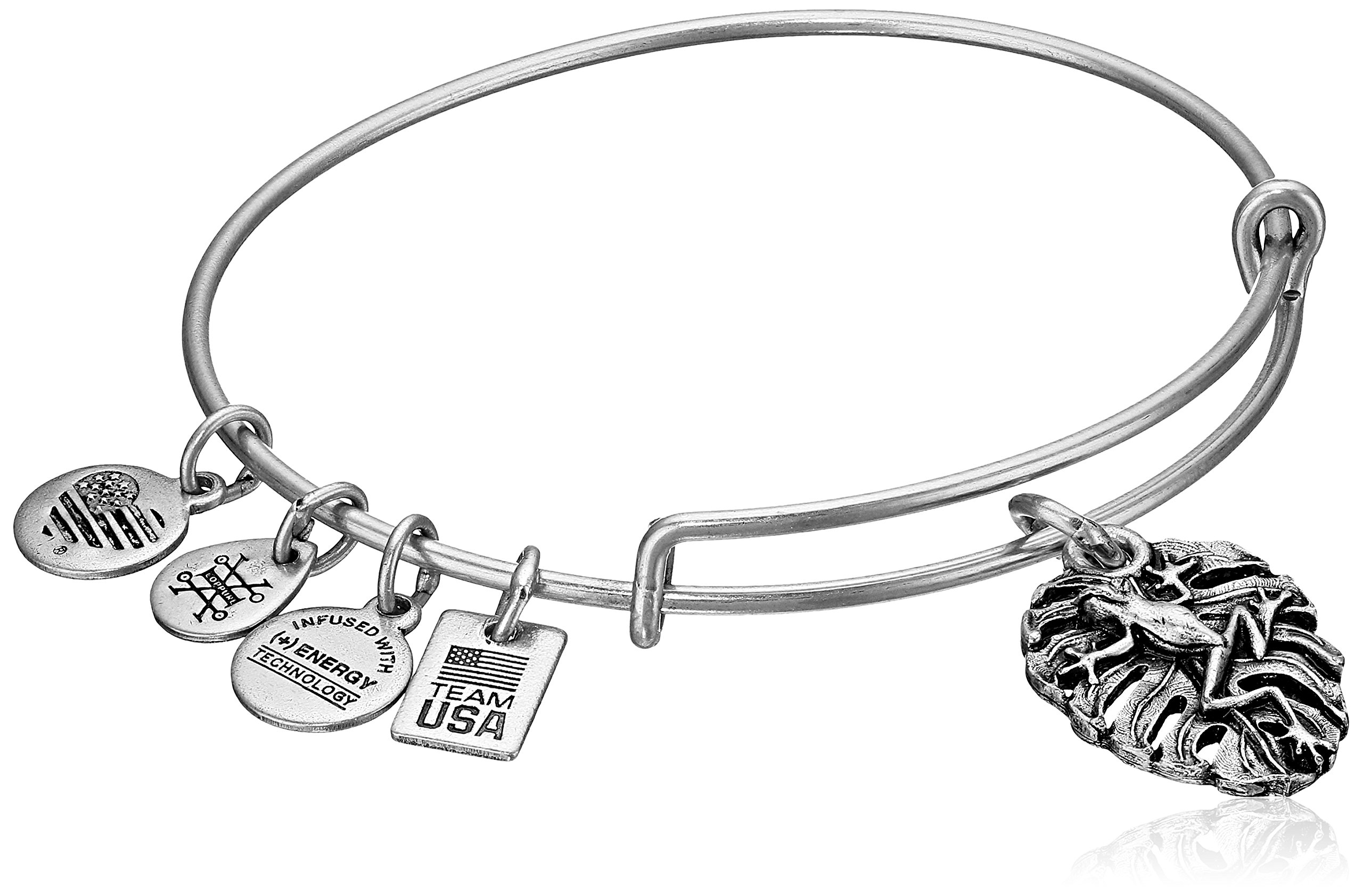 Alex and Ani Women's Frog Bangle Silver One Size