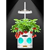 LED Plant Grow Light, LED Plant Grow Light for Indoor Plants, a New Generation of Desk Plant Grow Light with Timer, Plant Lig