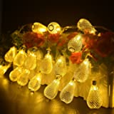 Dailyart® 2M Elegant Drops 20lights LED String Light, Warm White Glow, Battery-Powered