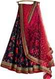 StyleVilla Women's Silk Lehenga Cholis (HL_1107_Multi-Coloured_Free Size)