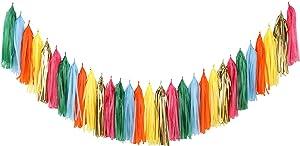 Fonder Mols Mexican Fiesta Tassel Garland DIY Kit Papel Picado Decor Birthday Party Hanging Decorations(Pack of 30, Red Gold Cerise Cream Green Blue Fushia) A08