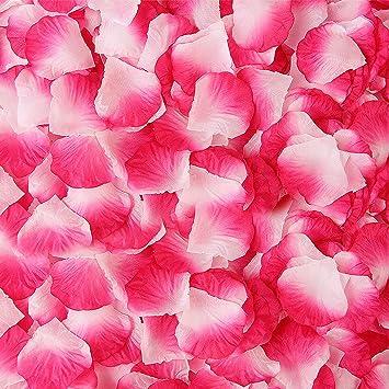 Amazon.com: BESKIT - 3000 pétalos de rosa de seda ...