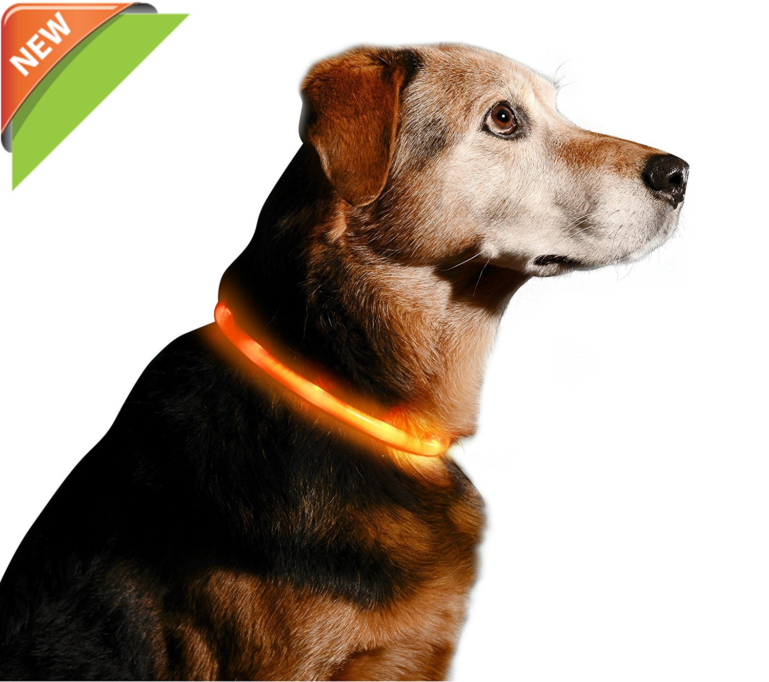 LED Dog Collar, USB Rechargeable Waterproof Safety Pet Dog Collar Light One Size Fits All USB Rechargeable Waterproof Safety Pet Dog Collar Light One Size Fits All (red) HOWOYOUNG