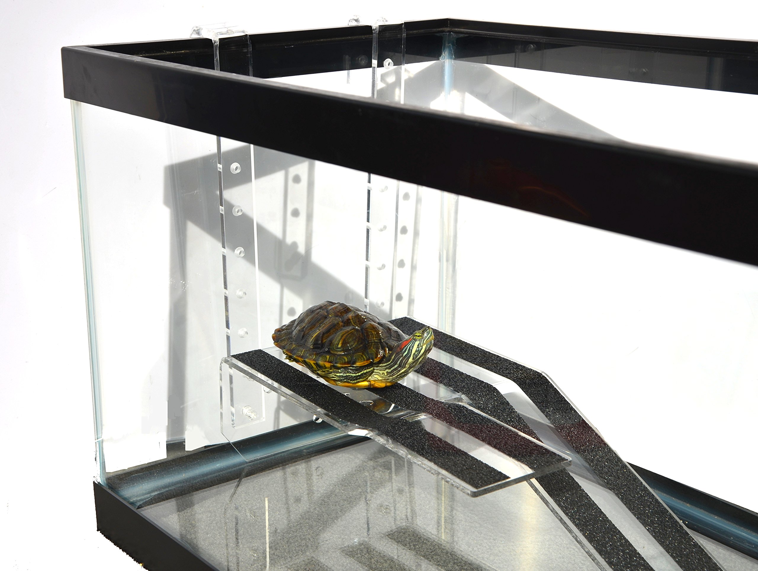 FREE SHIPPING IN THE USA OASIS TURTLE RAMP MEDIUM WITH SUCTION CUPS