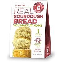 Cultures for Health - Gluten-Free Sourdough Starter