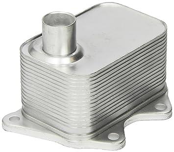 Vemo V15-60-6020 Radiador de aceite, aceite motor