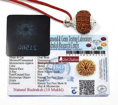Shri Rudram 10 Mukhi Rudraksha/Ten Face Rudraksh Nepal Bead Silver Pendant  Lab Certified Size : 19-20 MM