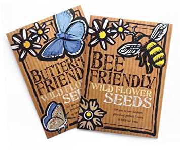 come along with me and the butterflies and bees